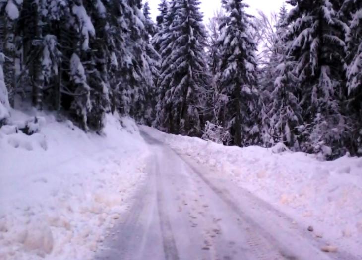 location gite dans les Vosges